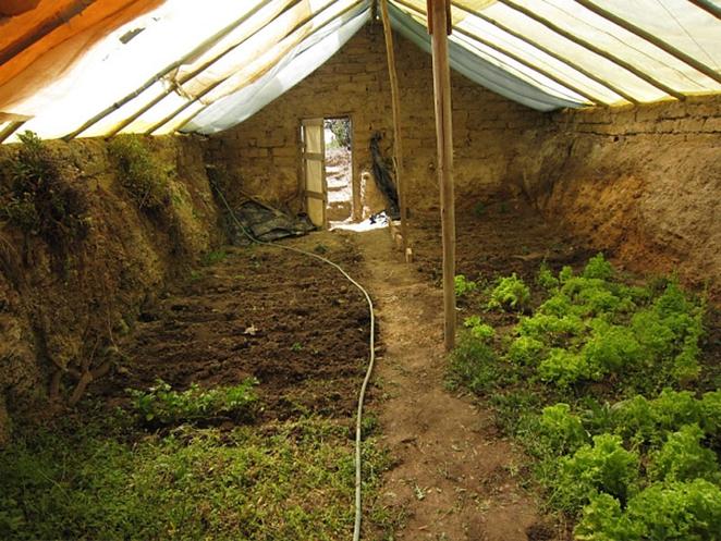 walipini-sklenik-podzemny-ekologicke-zahrada-zahradnictvo-pestovanie-solarne-zdroj-
