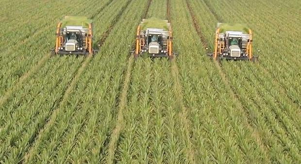 permakultura-ekologicke.poptraviny-zdroje-udrzatelne-
