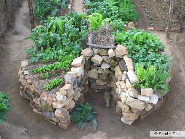 keyhole1 Keyhole Gardens   Africké vyvýšené záhony vo vašej záhrade